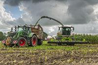 Corn harvest vehicles frontal phase 4