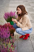 Young beautiful woman sitting in squats holding a flower pot with blooming violet heather plant in a street flower shop. European urban lifestyle.