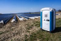 Portable toilet at an asparagus field