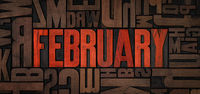 Retro letterpress wood type printing blocks - February