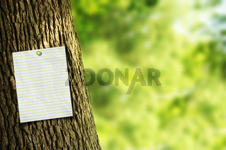 Tree trunk with a note