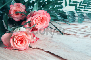 Birthday card with pink roses on wood.