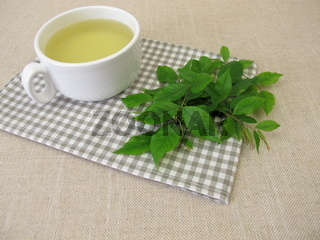 Eine Tasse Kräutertee mit Hagebuttenblättern, Wildrosenblättern