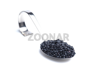 Organic beluga lentils on a curved stainless steel serving spoon