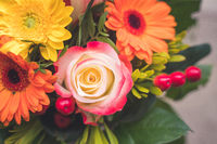Greetings, anniversary or Mother's Day concept: Close up of colorful fresh spring flower bouquet with gerbera and pink roses