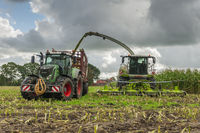 Corn harvest vehicles frontal phase 3