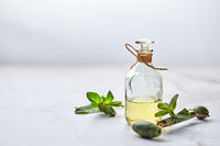 Bottle of essential oil of mint and green leaves and jade massage roller for the face. Natural organic ingredients for cosmetics, skin care, body care. Beauty care concept