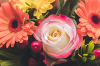 Valentine or Mother's Day concept: Close up of pink rose flower in bouquet