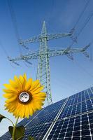 Solarmodule, Sonnenblume mit Steckdose und Strommast