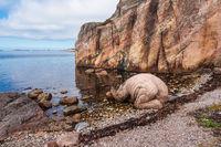Felsen auf der Schäreninsel Kapelløya in Norwegen