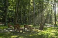 Begräbniswald Waldfrieden im Schlosspark Lütetsburg