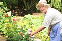Seniorin im Garten