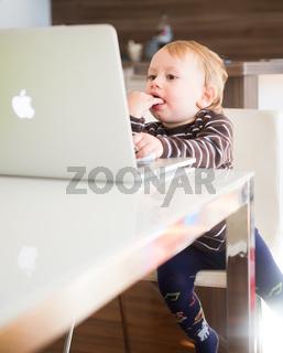 die apple generation