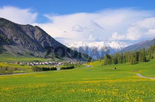 Engadin bei St. Moritz - Engadin near St. Moritz 01