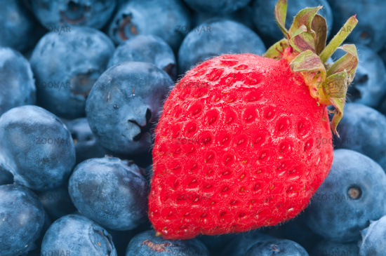 Fresh strawberry with blue berry