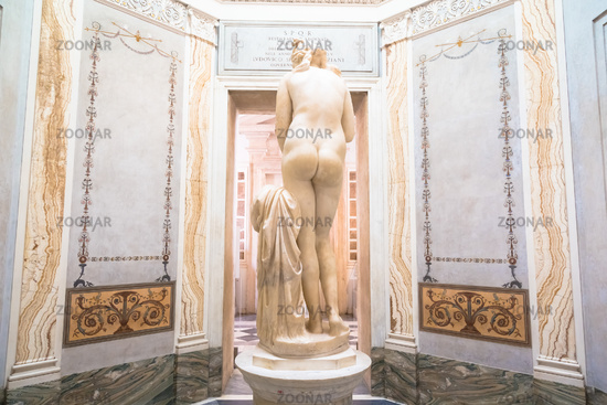 Roman antique statue of Capituline Venus in marble. Rome, Italy