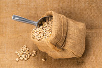 Closeup of soy beans in a sack with aluminum multi purpose scoop.
