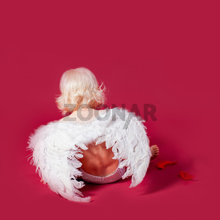 Back view of curly little angel. Cupid sitting
