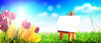 Beautiful tulips. Spring nature background for web banner and card design.