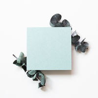 Blank green card paper with eucalyptus leaf on white background. top view, copy space