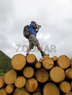 Fotograf blickt durch seine Kamera und steht auf einem Stapel von Holzstämmen