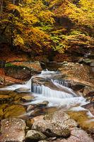 Mumlava Stream in Autumn Forest in Czechia