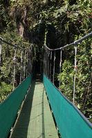 Eine Hängebrücke im Regenwald