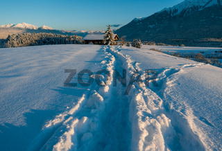 Deep snow trail path in sunlit alpine winter landscape in Wildermieming, Tirol, Austria