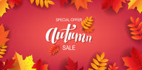 Sale Autumn Poster With Lettering Text With Leaves