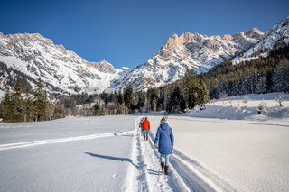 Sunny winter landscape in the nature: Group of people are walking on snowy footpath, mountain range, snowy trees, sunshine and blue sky