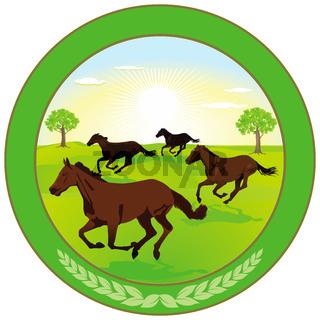 Pferdezucht-Label.jpg