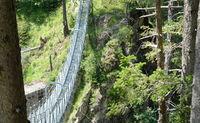 Suspension bridge between the trees in the alps mountains in Kals am Grossglockner