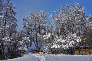 Winterstimmung am Bach mit Brücke