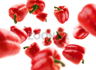 Red paprika levitates on a white background