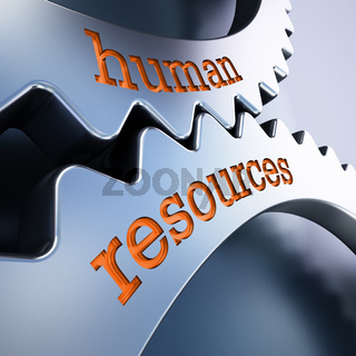 Two gears in motion with human resources text. 3D illustration