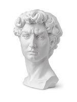 Plaster bust of David