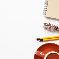 Notebook, eucalyptus leaf, pencil, coffee cup on white background. flat lay, top view, copy space. workspace