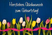 Tulip, Glueckwunsch Zum Geburtstag Means Happy Birthday, Ribbon, Blue Background