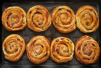 Homemade puff pastry cinnamon rolls with raisins placed on oven iron tray