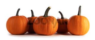 Orange pumpkins isolated on white