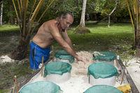 Schildkroeten Schutzprogramm, Papua Neuguinea