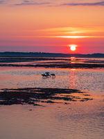 Sonnenaufgang im Wattenmeer auf der Insel Amrum
