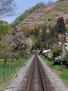 Schmalspurbahngerade Radebeul-Ost - Radeburg