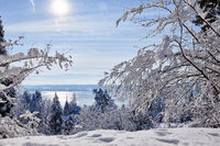 A21_0320_winter_ueberlingen