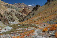 Zherin Valley of Zanskar