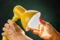 Putting new led light bulb into the socket of desk lamp.