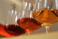 Weinglaeser mit Weinsorten 1.jpg