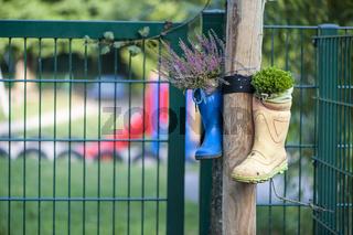Wellington boots on the garden fence