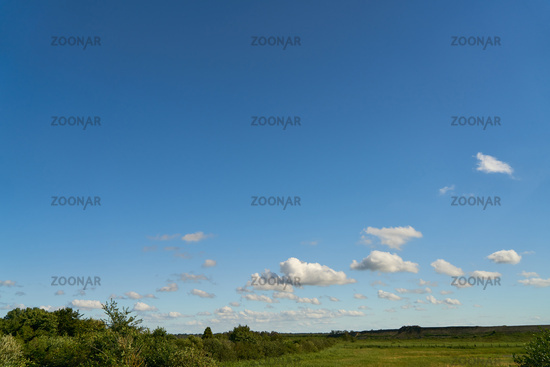 Grüne Wiese und blauer Himmel mit weißen Wolken