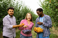 Co-workers at the fruit farm after picking harvest